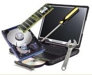 Ремонт компьютеров,  обновление,  чистка вирусов.