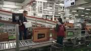 Разнорабочие на пивзаводе и на заводе